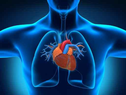 baltymai šlapime su hipertenzija saulėgrąžų sėklų receptas sergant hipertenzija